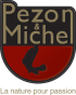 Site web de Pezon & Michel et Gunki