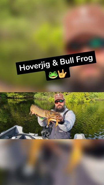 Hoverjig & Bull Frog 🐸🤟